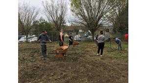 Teens working hard in a community garden