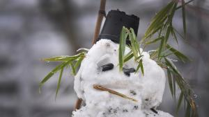 even snowmen get the blue