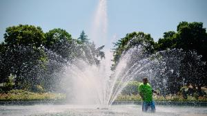 Man in fountain on a hot day in Portland, 2018