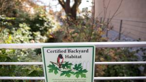 Hillsdale Library Backyard Habitat Certification sign