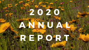 Cover page of 2019 Annual report - title with a background image of a trail through a forest