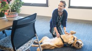 Disease detective Anne Schwindt take a rare pause from her COVID-19 work to pet Hyacinth the therapy dog.