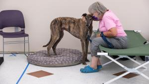 Photo of pet and it's owner at the Arbor Lodge Cooling Center.
