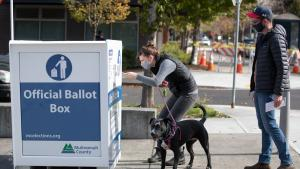 Two voters with a dog return their ballots to an Official Ballot Drop Site.