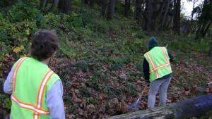 photo of youth raking for community service