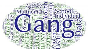 Multnomah County Comprehensive Gang Assessment