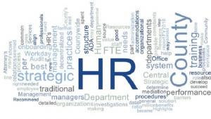 Word cloud about the HR system audit