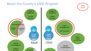 Graphic explaining the tasks of the Intellectual and Disability Program