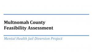 Mental Health Jail Diversion Project Title Photo