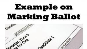 Example of marking a ballot