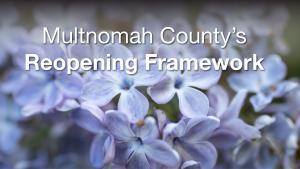 Cover of Reopening Framework