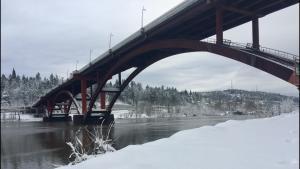 Sellwood Bridge in snow