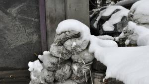 Snow and sandbags