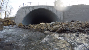 Water flowing out of a large concrete arch through a natural streambed.