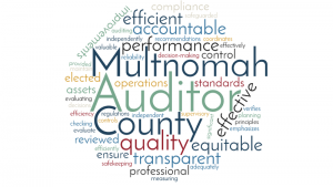 Word cloud of Auditor's mission and goals.