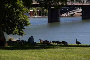 During hot weather and COVID-19, seek the shade while you keep distance from people who aren't members of your household