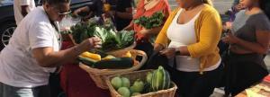 Community members pick up fresh produce