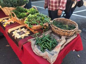 Fresh produce from the CSA program