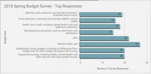Commissioner Meieran Budget Survey 2018 Results 2