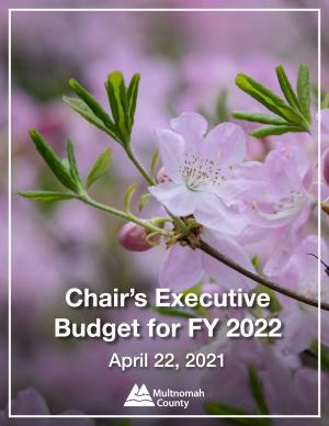 Cover of Chair's executive budget