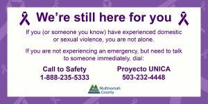 Domestic Violence Crisis Line