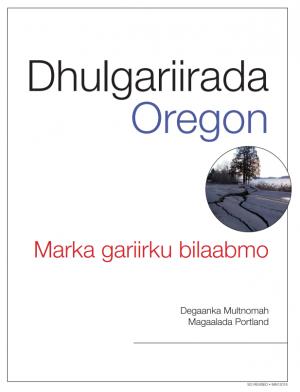 Cover image of Earthquake Primer in Somali