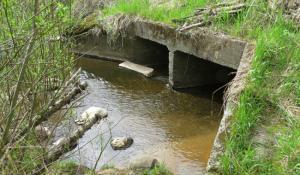 Old culvert carries Beaver Creek under SE Cochran Road.