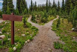 You Choose Your Path by James Wheeler (CC BY-NC-SA 2.0)