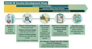 Graphic showing the sequence of different phases of vaccine development, described in text