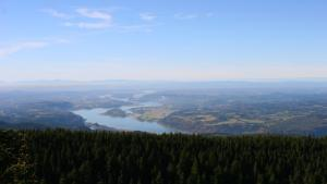 A view of the Columbia River and the Gorge, looking down from the summit of Larch Mountain.
