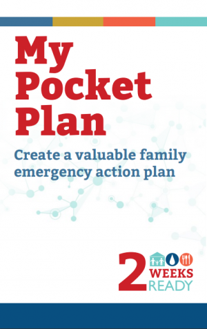 Cover image of My Pocket Plan