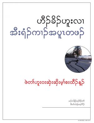 Cover image of Earthquake Primer in Karen