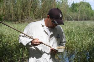 Multnomah County Vector Control mosquito