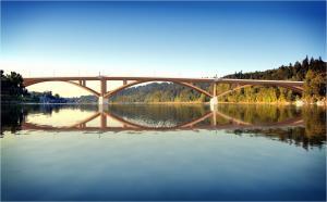 Sellwood Bridge Design
