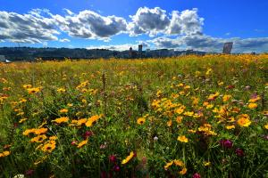 Multnomah County Portland