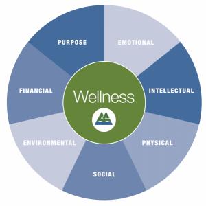 7 Dimensions of Wellness Wheel