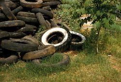 pile of old tires